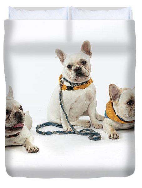 3010.064 Therapet Duvet Cover