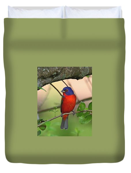 Painted Bunting Duvet Cover
