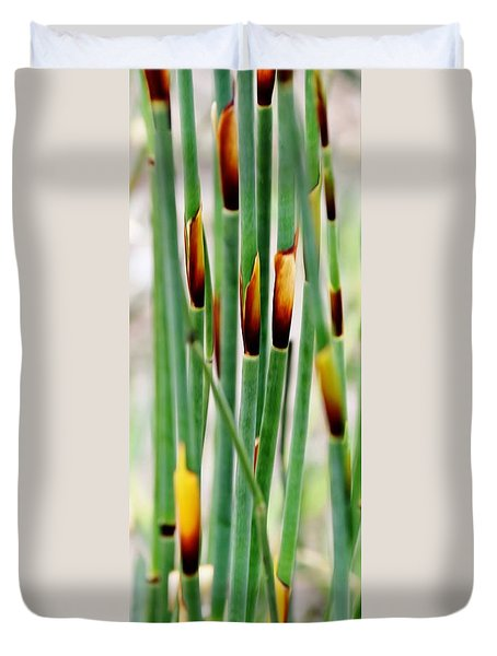 Duvet Cover featuring the photograph Bamboo Grass by Werner Lehmann