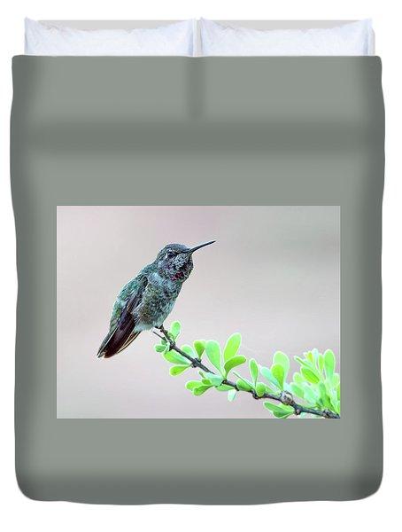 Anna's Hummingbird Duvet Cover by Tam Ryan