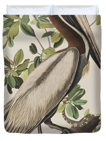 Brown Pelican  Duvet Cover by John James Audubon