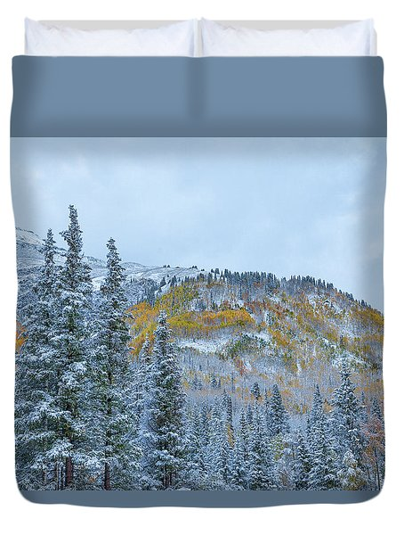 Colorado Fall Foliage 2 Duvet Cover