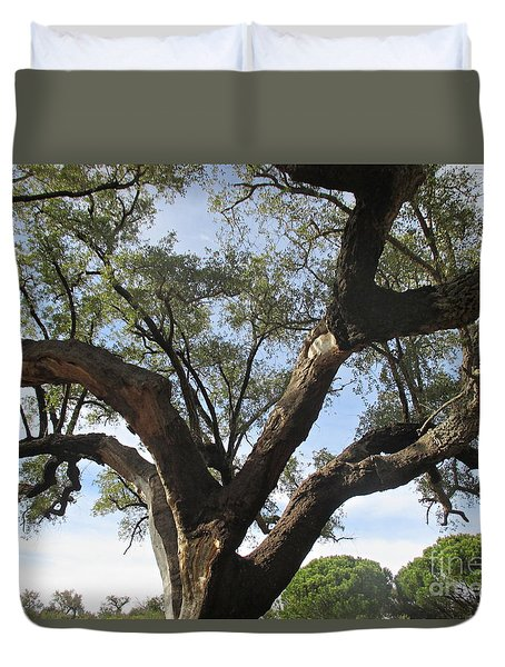 Cork Oak And Pines Duvet Cover