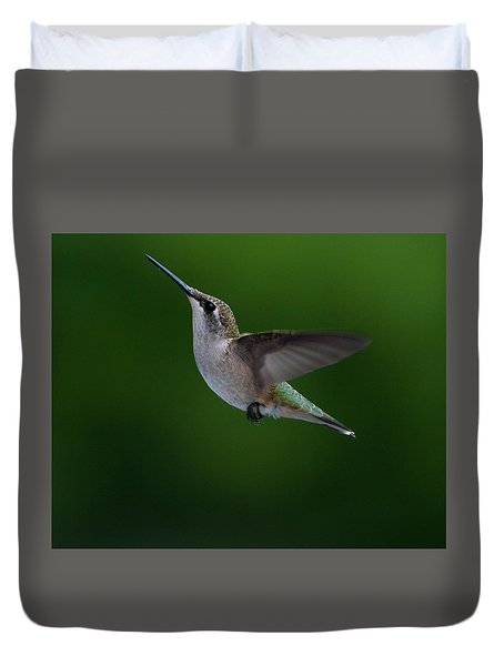Female Ruby Throated Hummingbird Duvet Cover by Brenda Jacobs