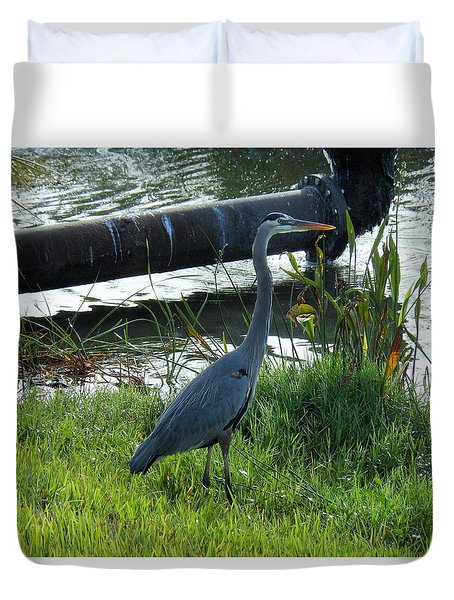 Great Blue Heron Duvet Cover by Kay Gilley