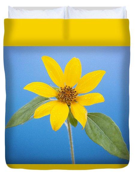 Happy Sunflowers Helianthus  Duvet Cover
