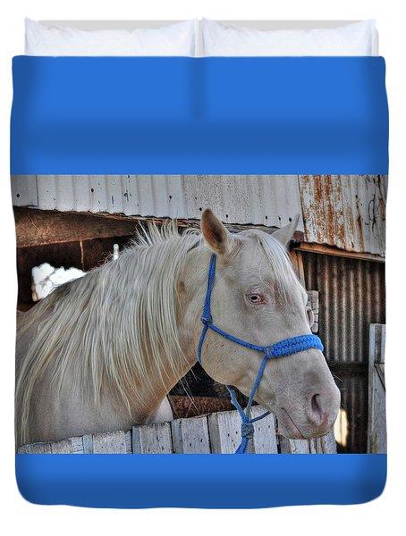 Horse Duvet Cover by Savannah Gibbs