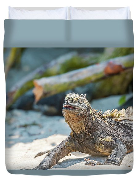 Marine Iguana On Galapagos Islands Duvet Cover
