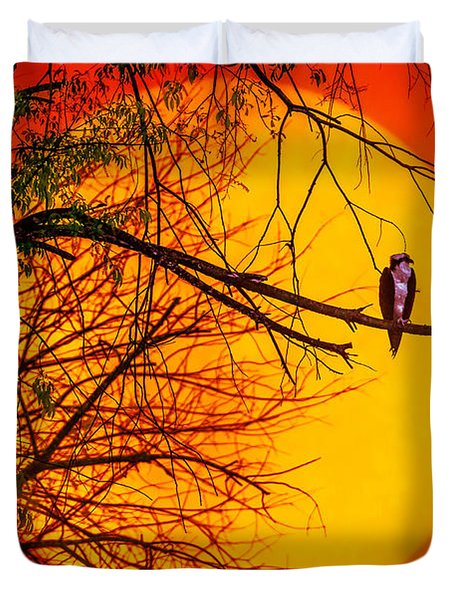 Out On A Limb Duvet Cover by Brian Stevens