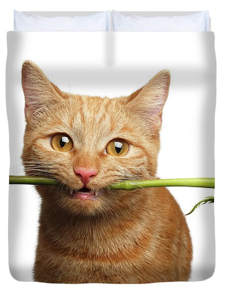 Portrait Of Ginger Cat Brought Rose As A Gift Duvet Cover