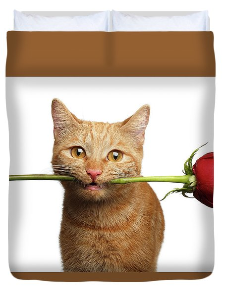 Portrait Of Ginger Cat Brought Rose As A Gift Duvet Cover by Sergey Taran