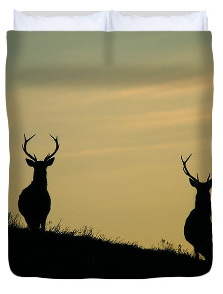 Red Deer Stags  Duvet Cover