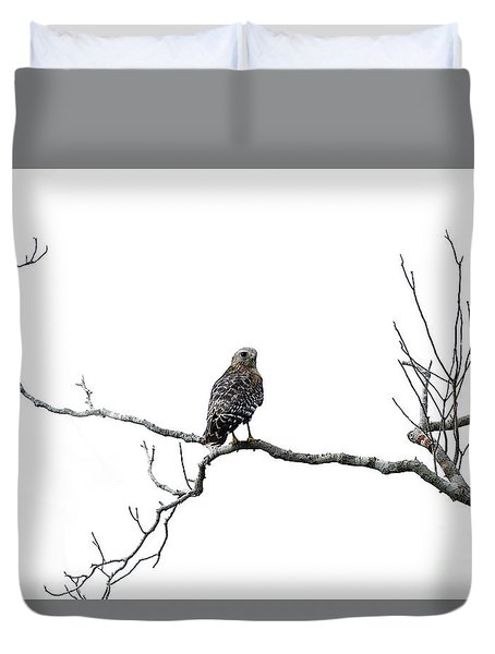 Duvet Cover featuring the photograph Red Shouldered Hawk by Anne Rodkin