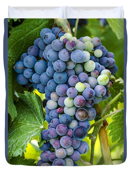 Red Wine Grapes Duvet Cover
