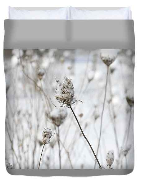 Snow Covered Queen Anne's Lace Duvet Cover by Birgit Tyrrell