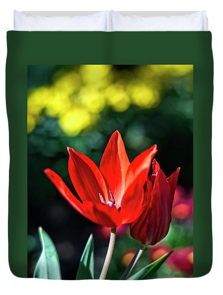 Spring Garden Duvet Cover by Miguel Winterpacht