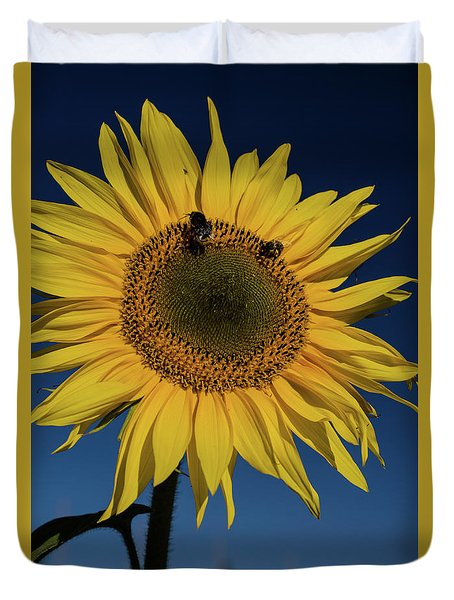 Sunflower Fields Duvet Cover