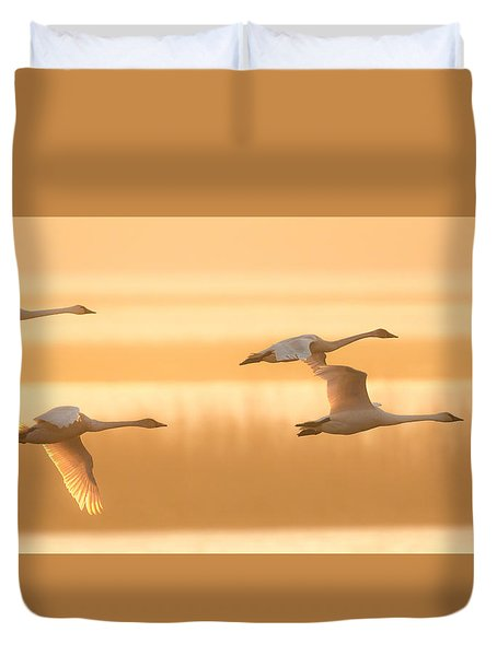 Duvet Cover featuring the photograph 4 Swans by Kelly Marquardt