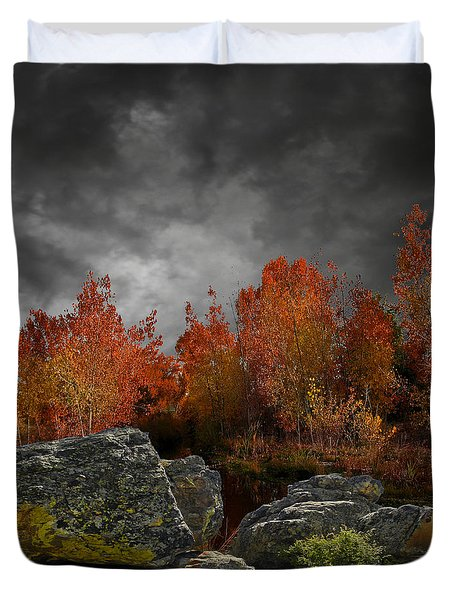 4004 Duvet Cover by Peter Holme III