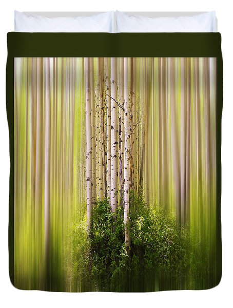 4012 Duvet Cover by Peter Holme III
