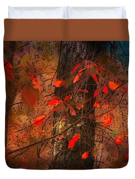 4019 Duvet Cover by Peter Holme III