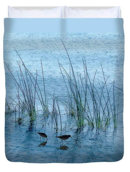 4177 Duvet Cover by Peter Holme III