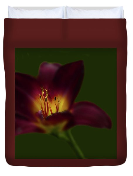 Duvet Cover featuring the photograph 4479 by Peter Holme III