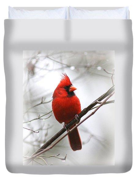 4772-001 - Northern Cardinal Duvet Cover