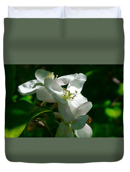Apple Blossoms Duvet Cover