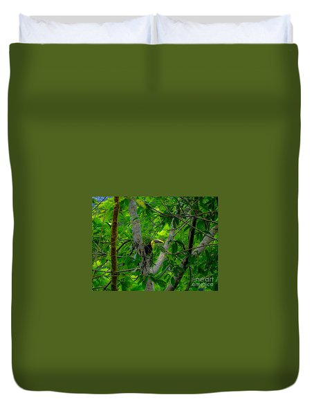 Chestnut-mandibled Toucan Duvet Cover