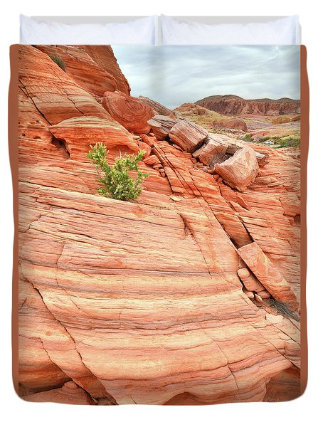 Duvet Cover featuring the photograph Colorful Wash In Valley Of Fire by Ray Mathis