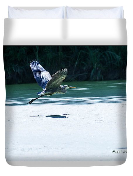 Great Blue Heron In Flight Duvet Cover by Edward Peterson