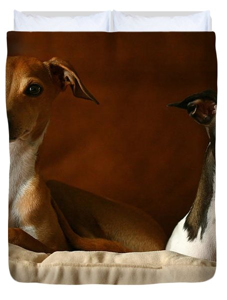 Italian Greyhounds Duvet Cover