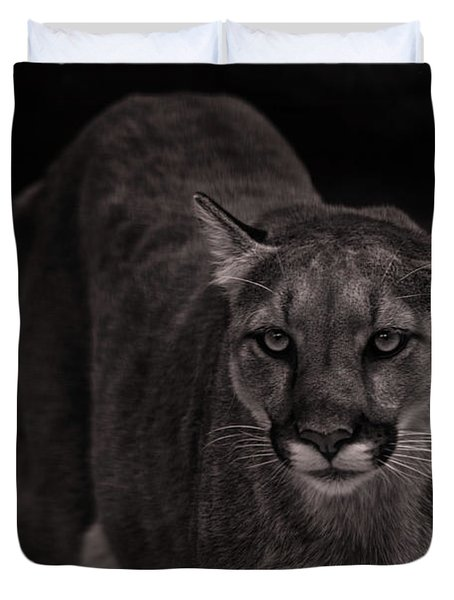 Mountain Lion  Duvet Cover by Brian Cross