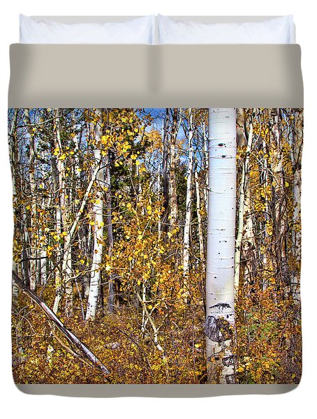 Rocky Mountain Fall Duvet Cover