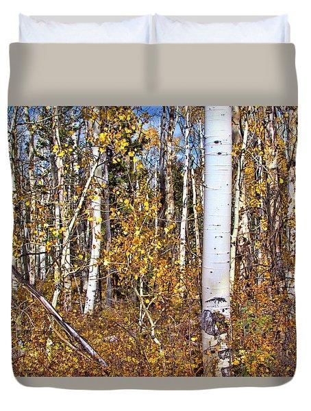 Rocky Mountain Fall Duvet Cover