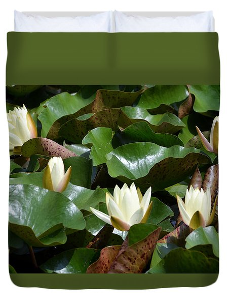 Duvet Cover featuring the photograph 5 Water Lilies Opening by Kathleen Stephens