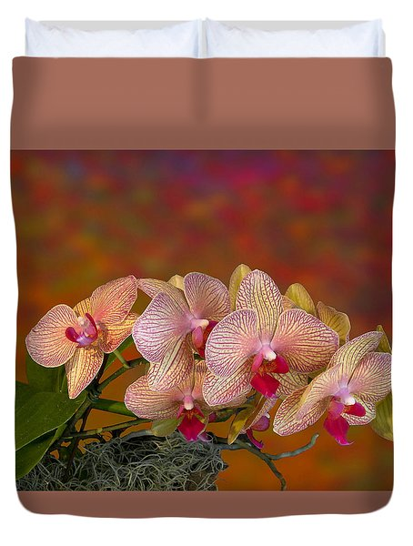 4117 Duvet Cover by Peter Holme III