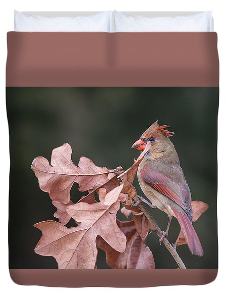 Ms Cardinal Duvet Cover