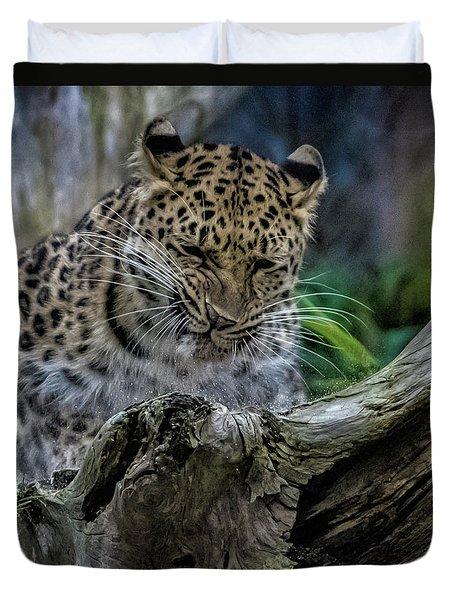 Amur Leopard Duvet Cover by Martin Newman