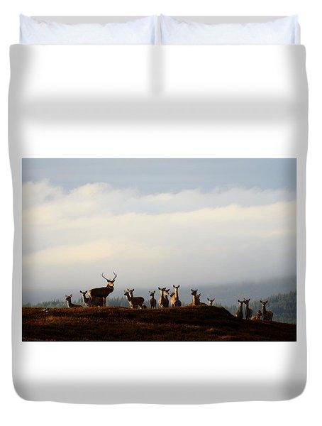Red Deer In The Highlands  Duvet Cover
