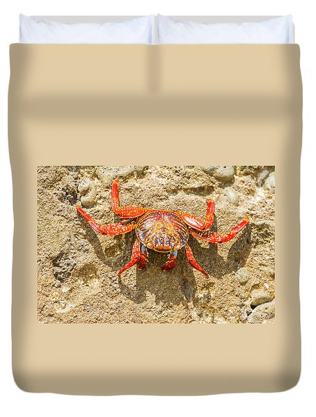 Sally Lightfoot Crab On Galapagos Islands Duvet Cover by Marek Poplawski