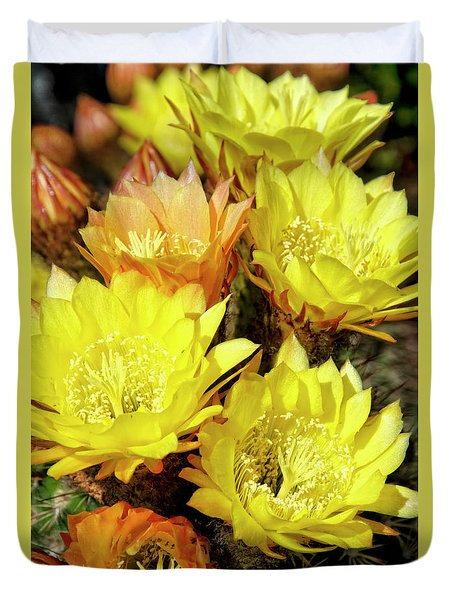 Yellow Cactus Flowers Duvet Cover by Jim And Emily Bush