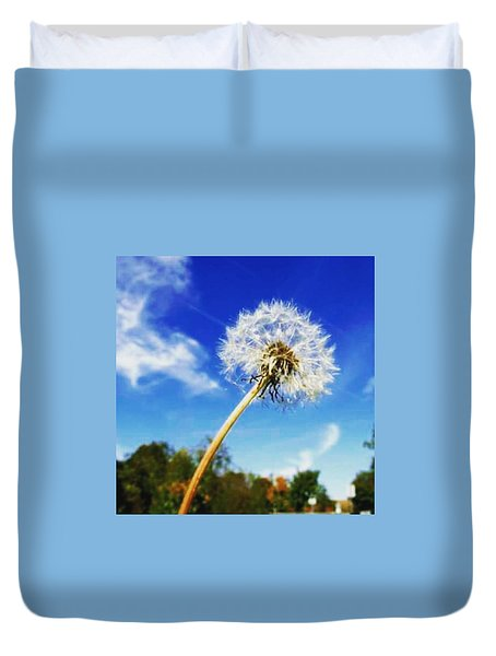 A  Fragile Flower On A Sunny Day Duvet Cover by Angela Zalameda