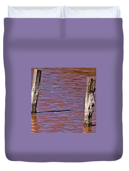 Primordial Soup Duvet Cover by Bob Wall