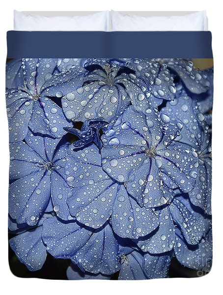 Blue Plumbago Duvet Cover by Elvira Ladocki