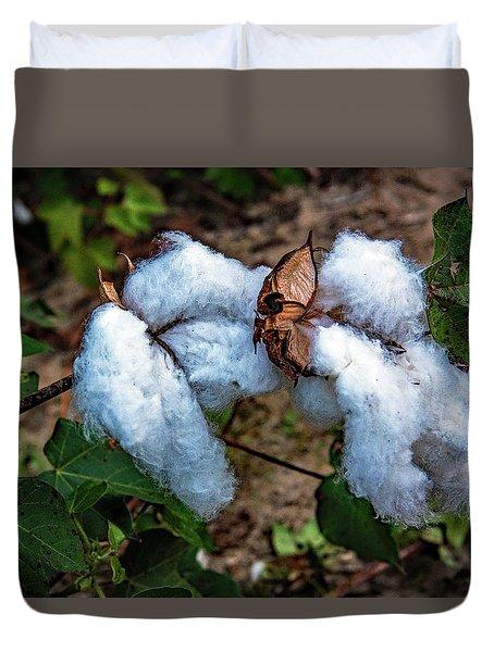 8 Bolls Of Cotton  Duvet Cover