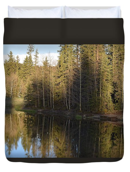 Shadow Reflection Kiddie Pond Divide Co Duvet Cover