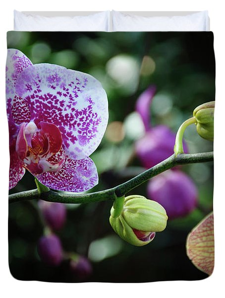 Butterfly Orchid Flowers Duvet Cover