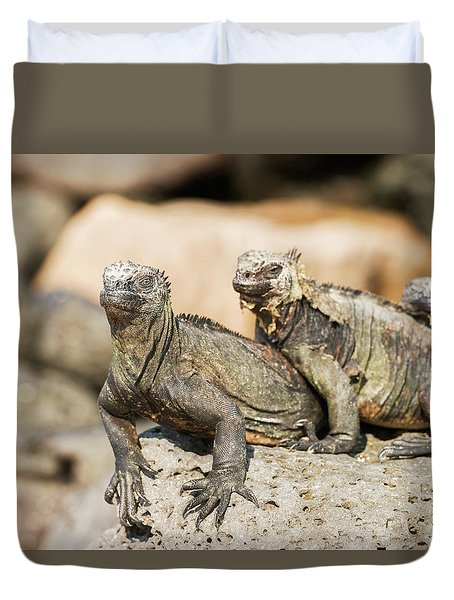 Duvet Cover featuring the photograph Marine Iguana On Galapagos Islands by Marek Poplawski